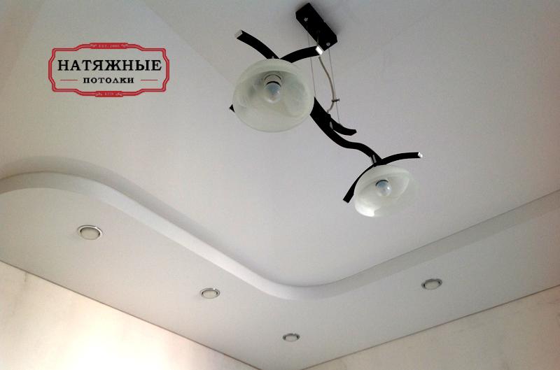 Faux Plafond Platre Salon Devis Travaux Construction
